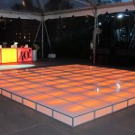 Wireless LED Dance Floor